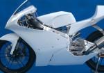 フルカウリング BATTLE GP-MONO
